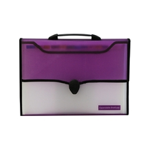 รูปภาพของ กระเป๋าพลาสติกหีบเพลง ออร์ก้า A4 12 ช่อง คละสี