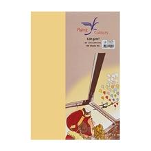 รูปภาพของ กระดาษสีถ่ายเอกสาร ฟลายอิ้ง 16 120แกรม A4 สีเหลืองเข้ม (แพ็ค100แผ่น)