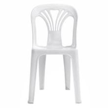 รูปภาพของ เก้าอี้พลาสติกอเนกประสงค์ เอเพ็กซ์ รุ่น หยก (เกรด A) สีขาว